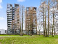 Cassandraplein 41 in Eindhoven 5631 BB