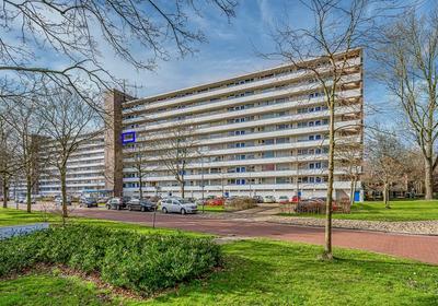 Honthorstlaan 96 in Alkmaar 1816 TD
