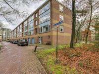 Antonie Van Leeuwenhoeklaan 225 in Soesterberg 3769 XG