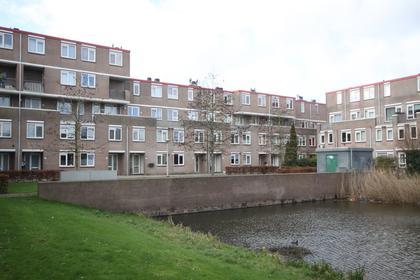 Remmerdenplein 12 in Amsterdam 1106 AD