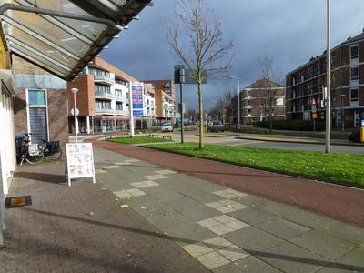 Van Randwijcklaan 6 E in Amersfoort 3814 AL