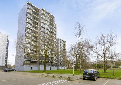Lankforst 5658 in Nijmegen 6538 LD