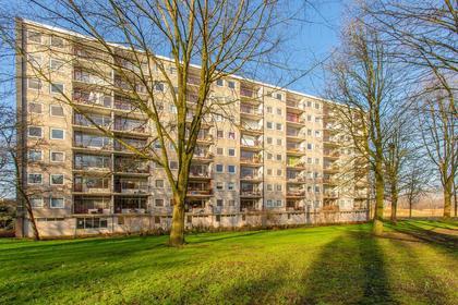 Elpermeer 42 in Amsterdam 1025 AJ