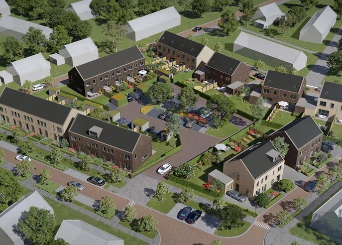 Koriander in Lelystad 8245 HA