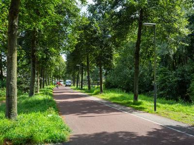Jan Van Scorelstraat 73 in Oosterhout 4907 PK