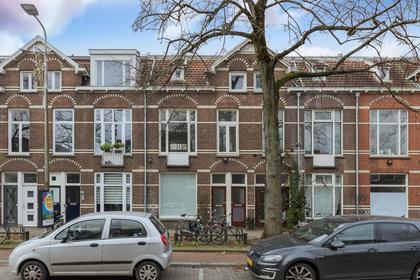 Adriaen Van Ostadelaan 113 Bis in Utrecht 3583 AD