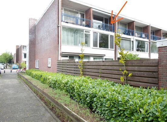 Eksterstraat 4 in Alphen Aan Den Rijn 2406 VH