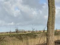 Schoneveld 182 in Breskens 4511 HV