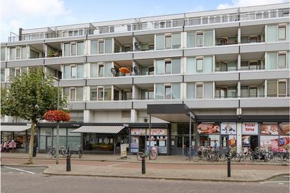 Parkweg 213 in Schiedam 3119 CG