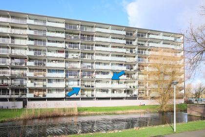 Arendshorst 43 in Leiden 2317 CR