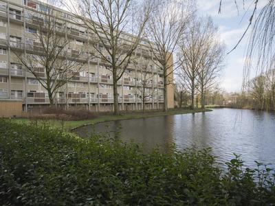 Van Bosseplantsoen 133 in Dordrecht 3317 PN