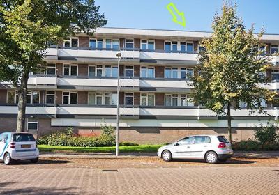 Bolestein 794 in Amsterdam 1081 ER