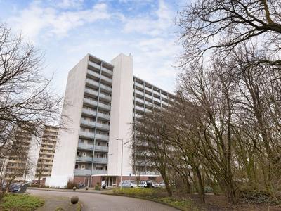 Jisperveldstraat 545 in Amsterdam 1024 BB