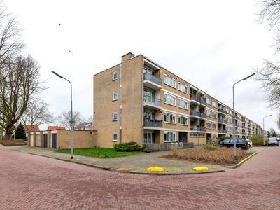 Populierenlaan 241 in Zwanenburg 1161 SL