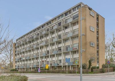 Van Bosseplantsoen 62 in Dordrecht 3317 PL