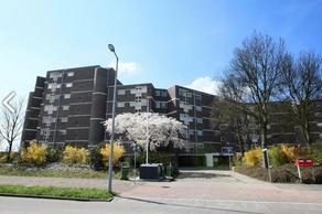 Dr. Albert Schweitzerdreef 301 in Maassluis 3146 AP