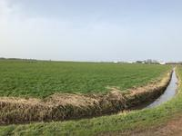 Leembruggerweg in Putten 3882 RV
