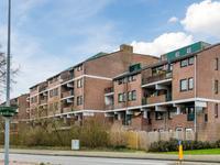 Winkelwaard 79 in Alkmaar 1824 HN