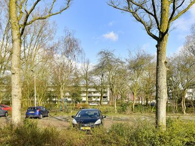 Bevelandsezijweg 6 in Amstelveen 1181 JK