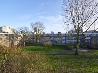 Slangenburg 25 in Amsterdam 1082 JT