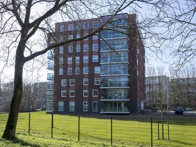 Campanula 3 in Dordrecht 3317 HB