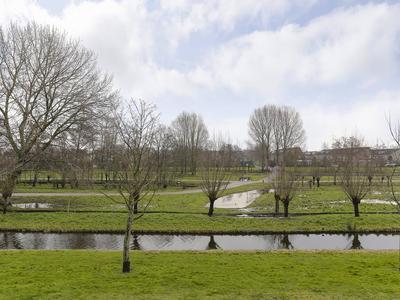 Galjoot 15 in Schiedam 3123 BE