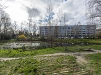 De Regenboogstraat 21 in Tilburg 5038 NP