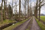 Tiekenveenweg / Kavel 1 in Overdinkel 7586 SC