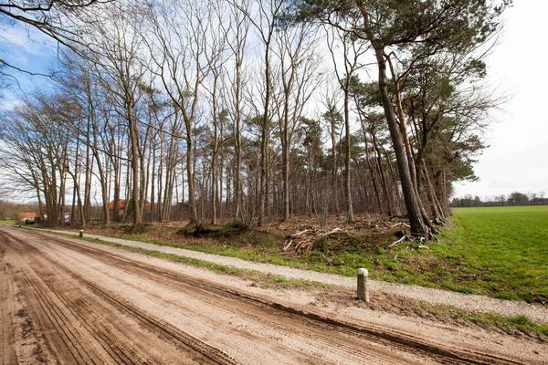 Henxelseweg in Winterswijk Henxel 7113 AD