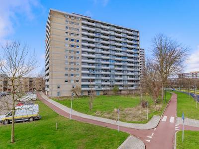 Waddenstraat 623 in Haarlem 2036 LS