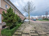 Otello 71 in Eindhoven 5629 NE