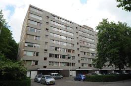 Roland Holstlaan 943 in Delft 2624 KG