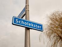 Scholekster 17 in Spanbroek 1715 TD
