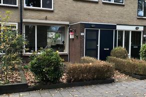 Kruizemuntstraat 132 in Apeldoorn 7322 MX