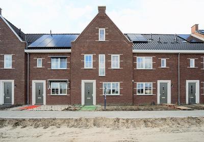Bizon 12 in Kampen 8265 NH