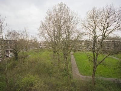 Ruigoord 24 in Rotterdam 3079 XR