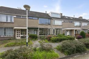 Sterrebos 86 in Breda 4817 SJ