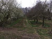 Platielweg/De Drie Heuvelen in Eijsden 6245