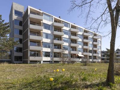 Saxenrodeweg 62 in Bentveld 2116 VC