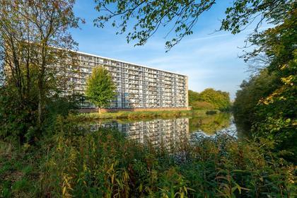 Metaallaan 249 in Groningen 9743 BV