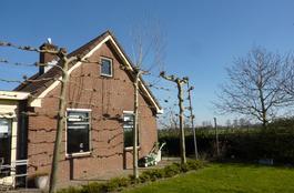Ravensgoedseweg 1 A in Zwartebroek 3785 XA