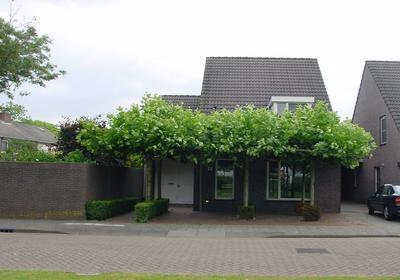 Begoniastraat 26 in Veghel 5462 AS