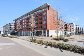 Onderwijsboulevard 596 in 'S-Hertogenbosch 5223 DN