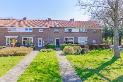 Oosteinderweg 19 in Velsen-Zuid 1981 AN