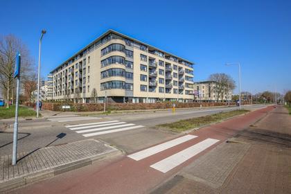 Zijpe 104 in Zwolle 8032 HX