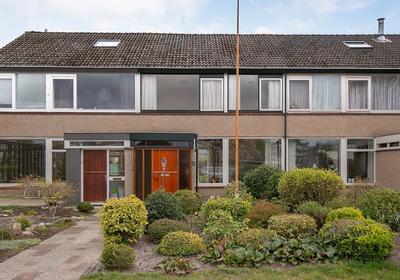 Jacob Van Ruisdaellaan 3 in Meppel 7944 CR