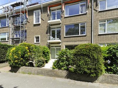 Amalia van Solmsstraat